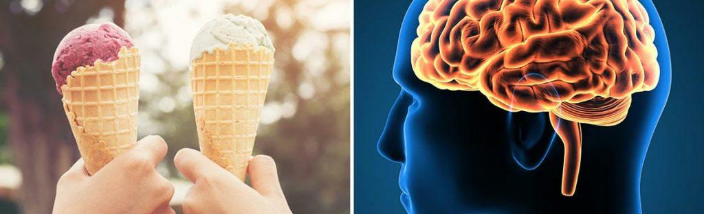 Iskrem i kjeks (foto) og røntgen av hode (illustrasjon). Sammensatt bilde.