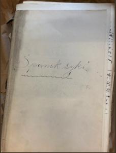 Archival documents on the Spanish flu
