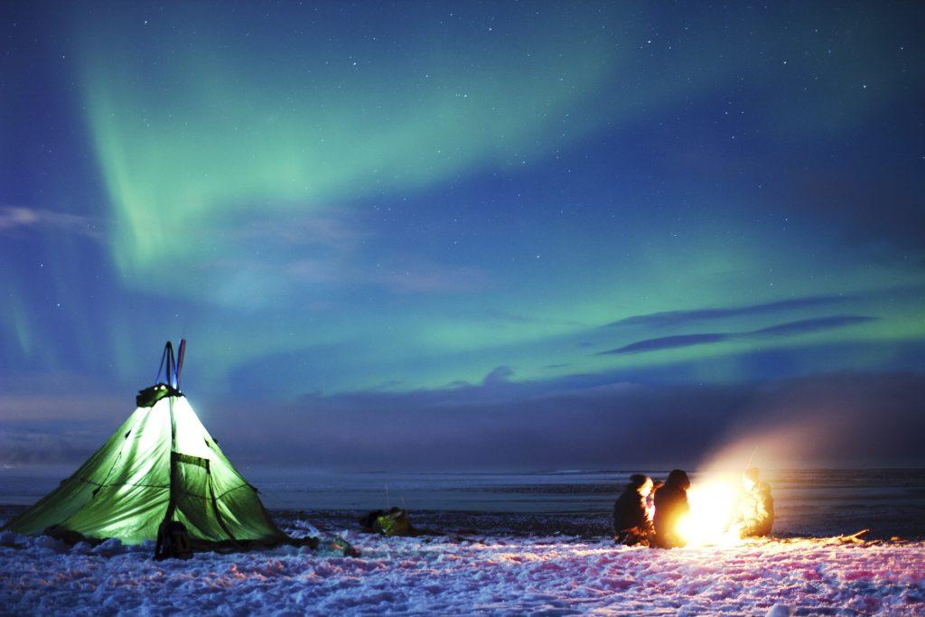 Nordlys i vinterlandskap
