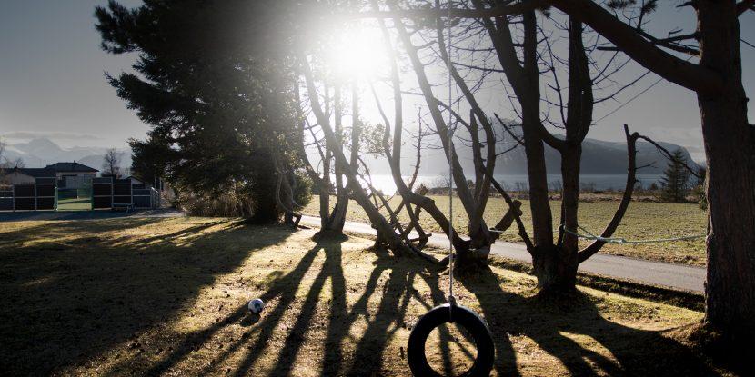 Trær i motlys med huske i forgrunnen.