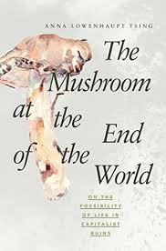 Bokk cover: The mushroom at the end of the world