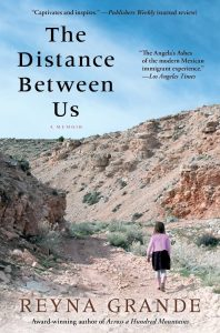 The book cover of The distance between us